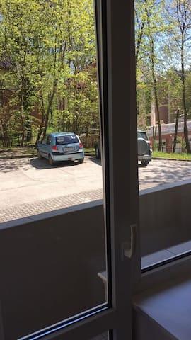 Отдых в Светлогорске.