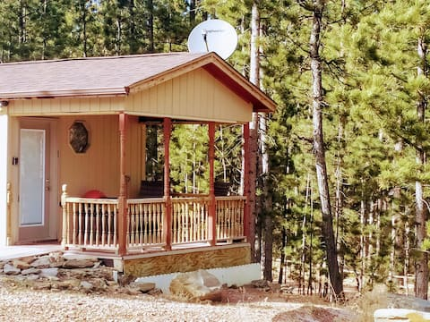 Cozy studio cabin in the heart of the Black Hills