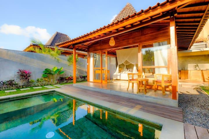 Canggu Villa 1BR Private Pool Abimanyu