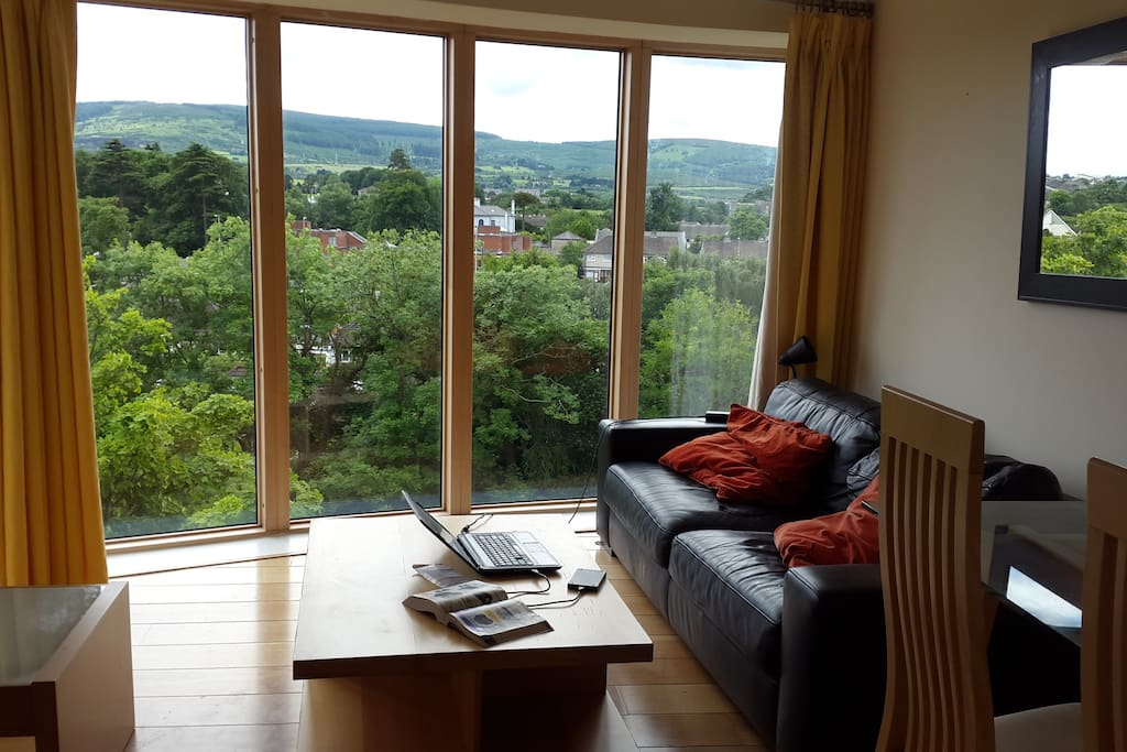 The Dublin mountains and plenty of native trees can be seen from the sofa!