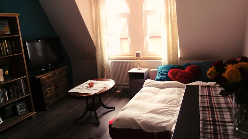 Spacious room close to the center - Nürnberg - Apartamento