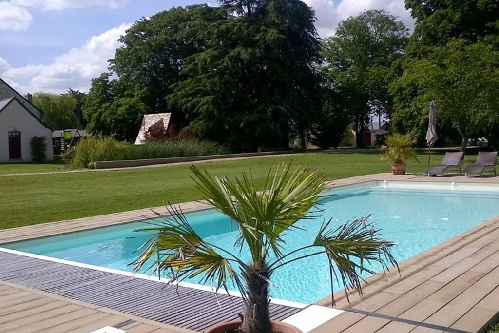 La piscine est implantée au coeur de la propriété