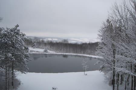 Hidden Pond Guest House - Hamilton - Chambres d'hôtes