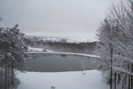 Hidden Pond Guest House - Hamilton - Dům pro hosty