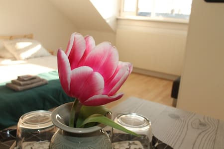 Nicely equipped room very close to Leiden Center - Voorschoten - 独立屋