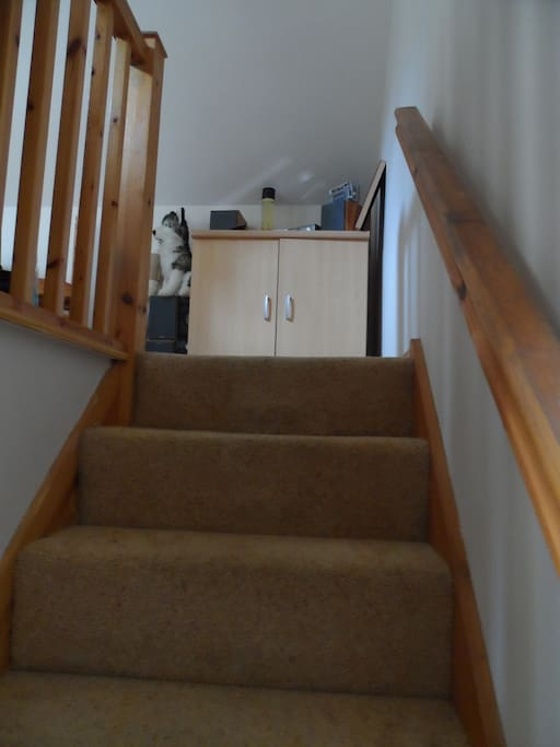 The access staircase
