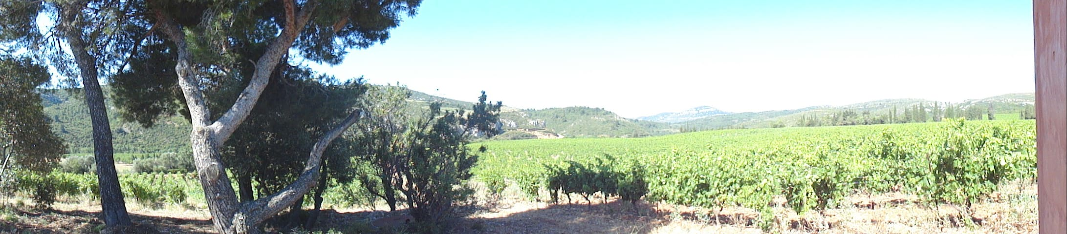 chambre avec vu sur les vignes et les corbieres - Portel-des-Corbières - Casa