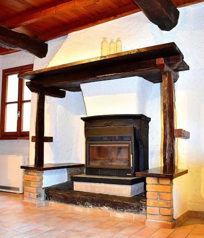Living Room 1 - Fireplace