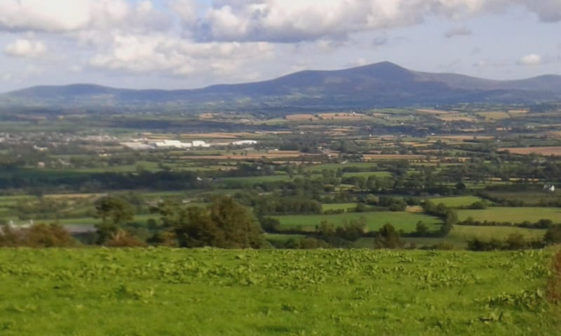 View of Bagnalstown