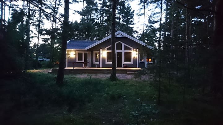 Summerhouse between forest and sea.