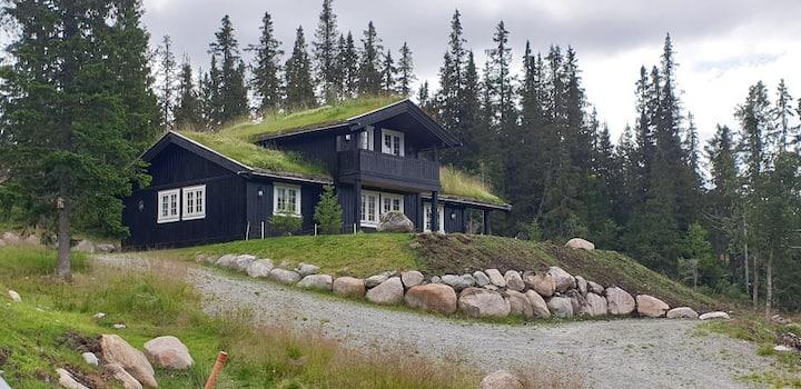 Flott fjellhytte, nydelig utsikt, ski inn/ski out
