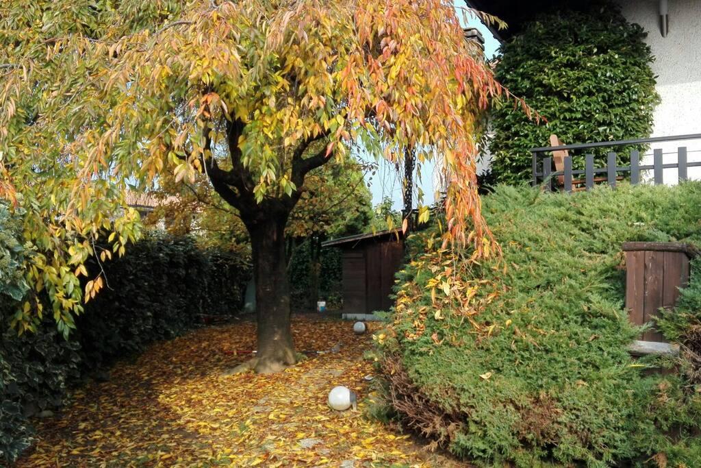 Giardino (lato sinistro)