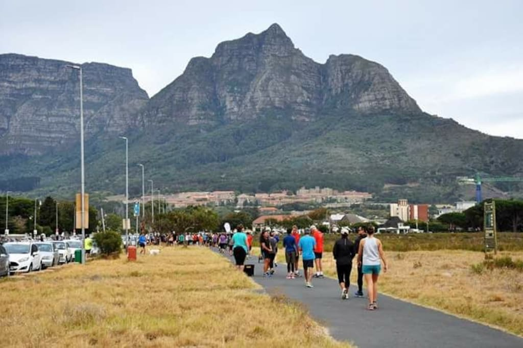 Take part in a Park run or a walk around the Rondebosch Common, a national monument