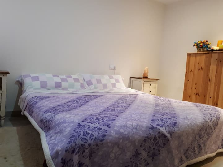Private room in centric newly renovated flat