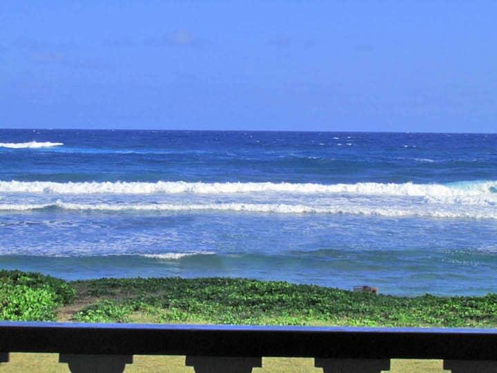 Direct Oceanfront 250