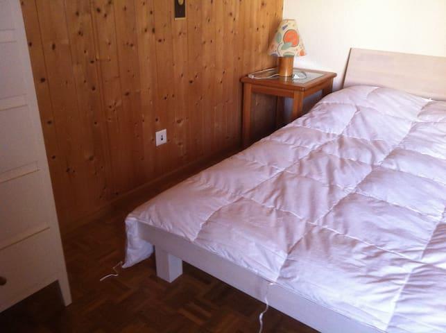 Fitnessraum + douche/WC - Schaan - House