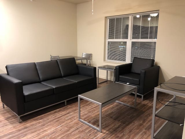 Brand New 1 Bedroom near Campus & Downtown