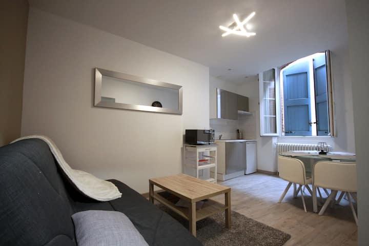Appartement T2 Centre Historique D'Albi