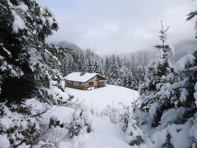 Woods Life Valtellina CHALET  CIR:014034-CNI-00006