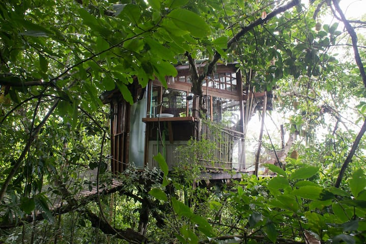 Suite tree house, ecological and sea view! - Paraty
