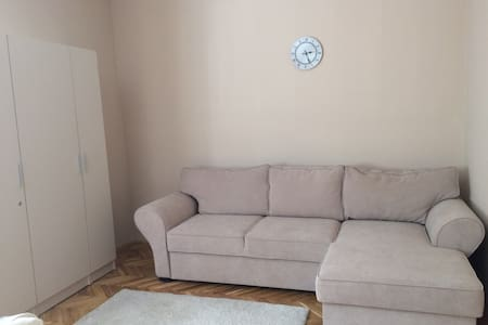 Peaceful apartment in downtown - Szeged - Huoneisto