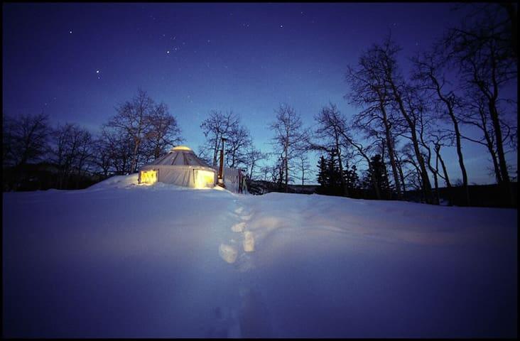 New Yurt