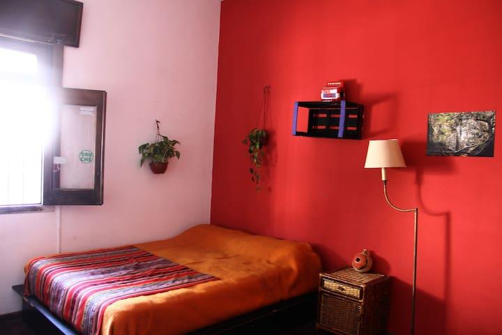 Gran habitación muy luminosa, pileta y jardín