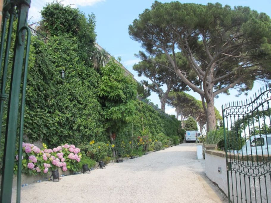 our avenue that will take you to your holiday home