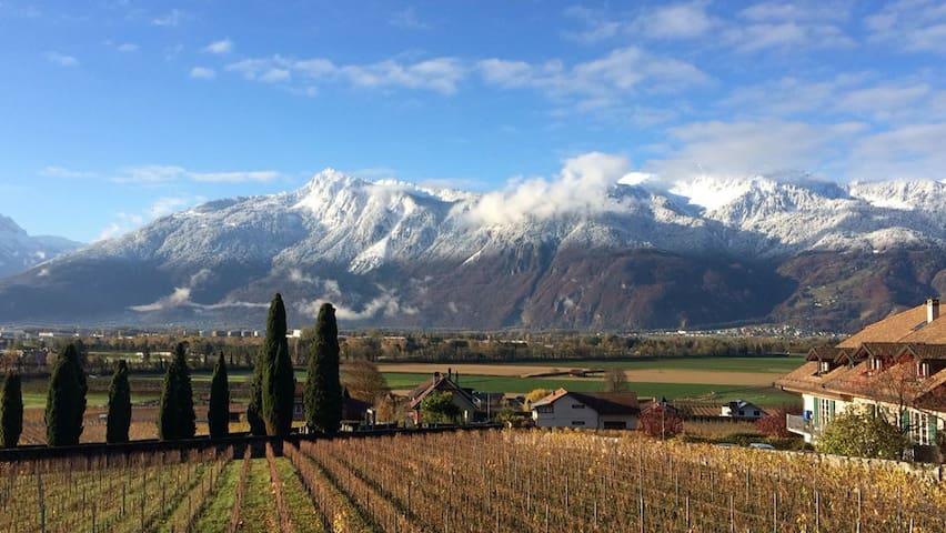 180° Mountain view - Close to Vevey
