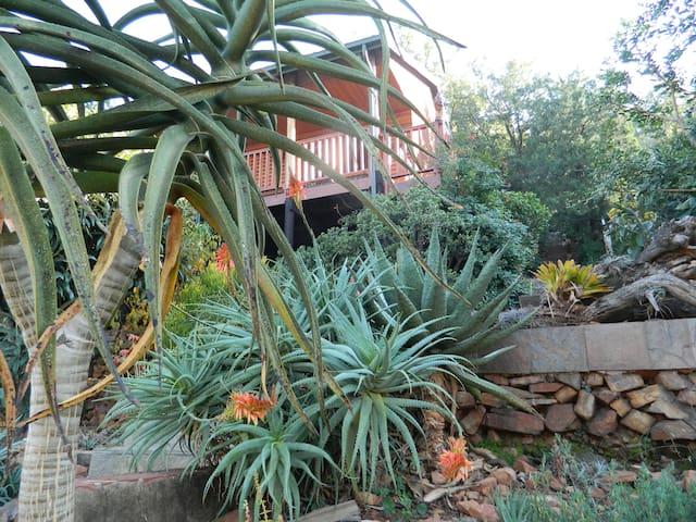 Riviera  ,Pretoria  Very special accommodation