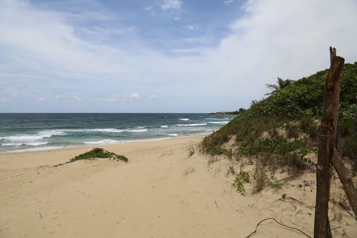 see the Jobos beach break? a 5 minute walk along the beach takes you there