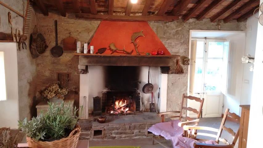 Casa del Pari - la tua vacanza rustica a Calci - Calci - House