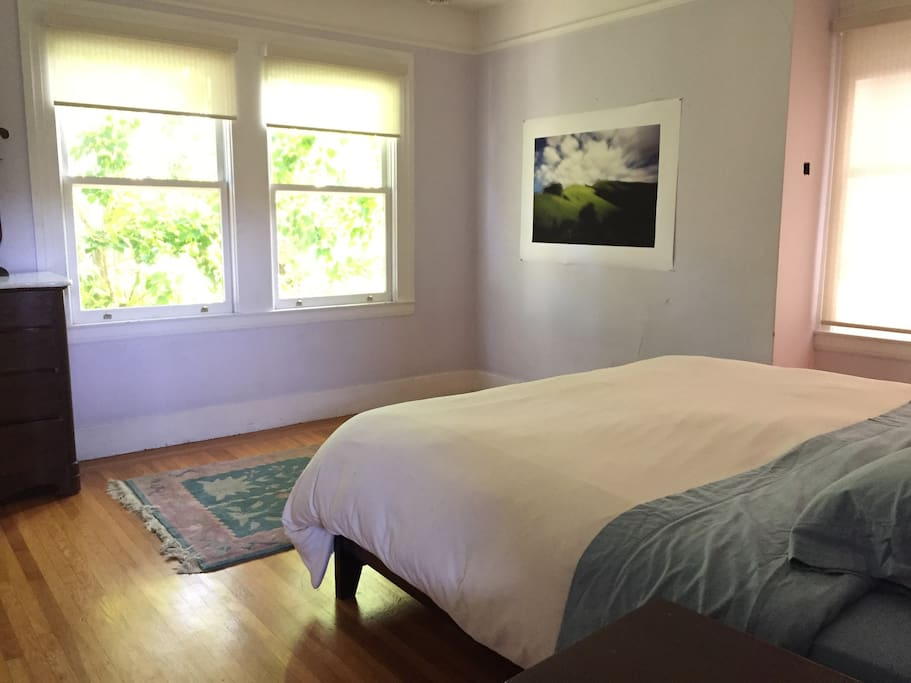 Sunny bedroom with king-sized bed and leafy tree view (and blackout blinds)