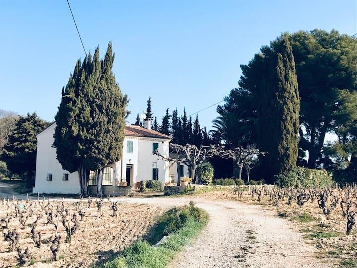 Charmante maison de campagne au cœur des vignes