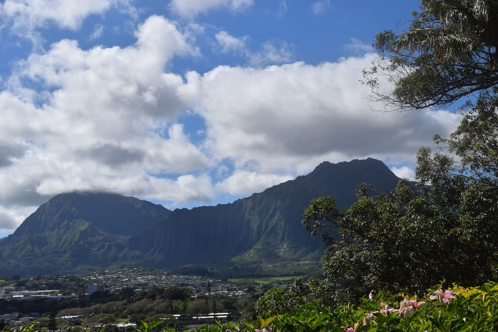 View of the Koolau mountains from the property