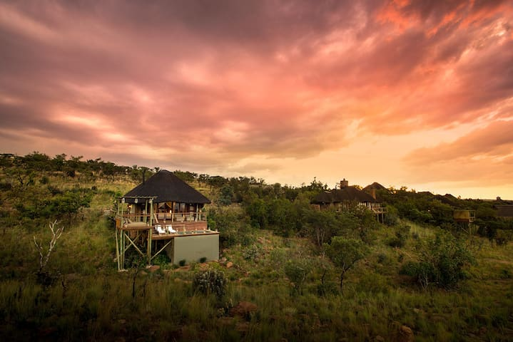 Mhondoro Safari Lodge