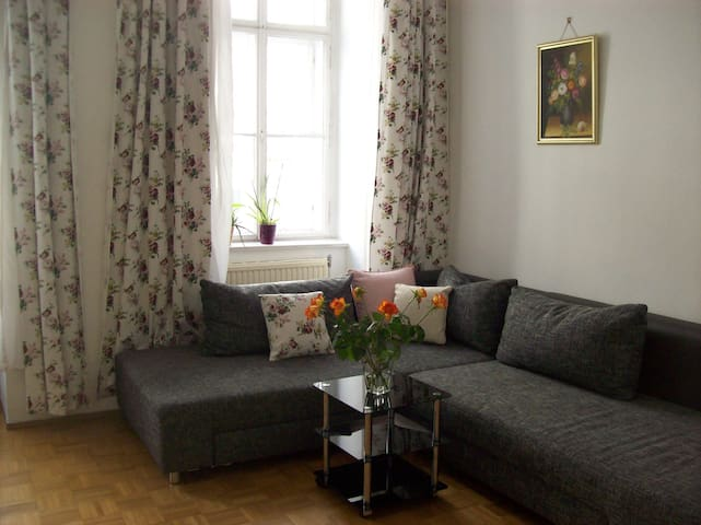 Aparment in the heart of Vienna - Viena - Apto. en complejo residencial