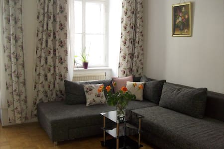 Aparment in the heart of Vienna - Vienna