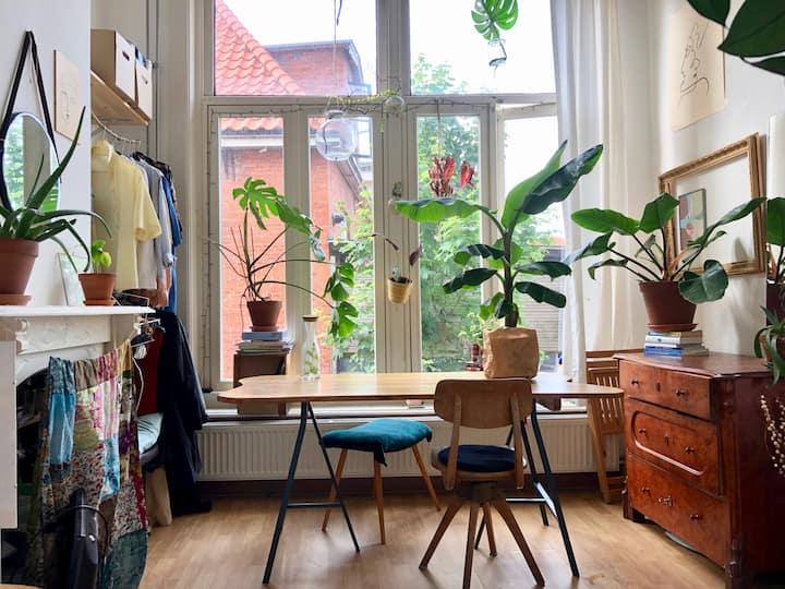 Cosy & calm room in the heart of Groningen