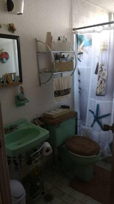 El baño es de uso exclusivo del visitante.
