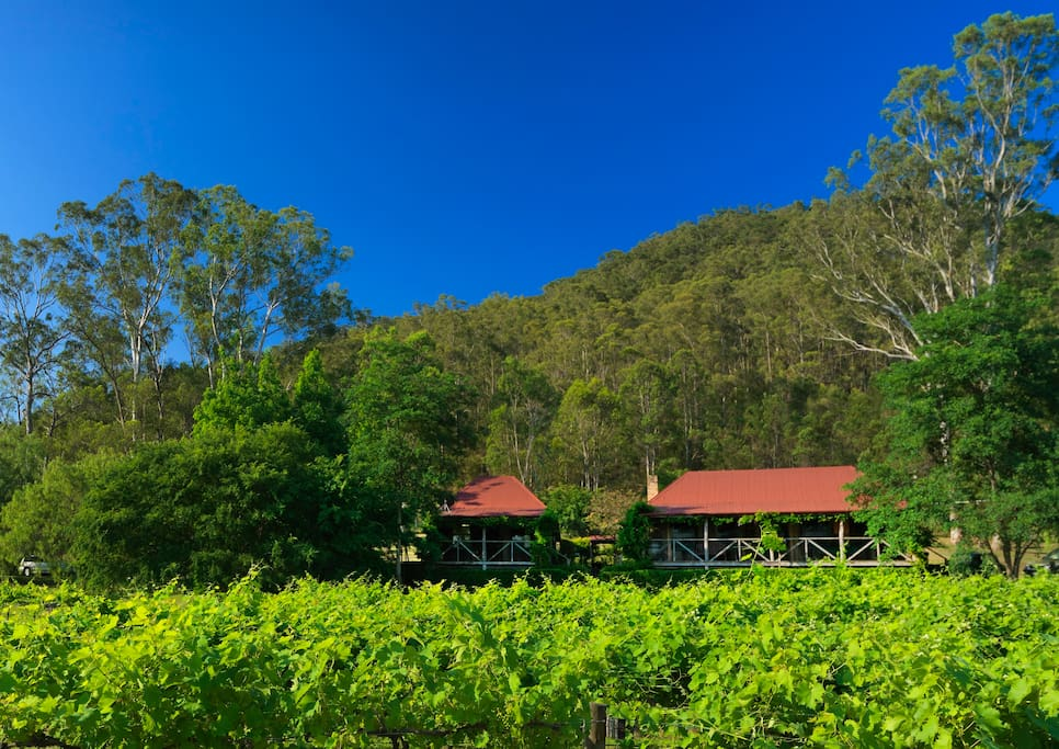Gatekeeper's Cottage is set on the edge of our Shiraz vineyard with views across the valley.