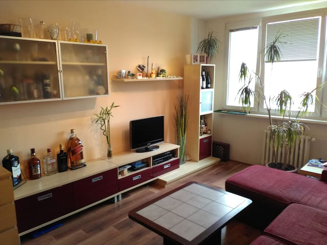 Cozy and sunny apartment (part) in quiet area