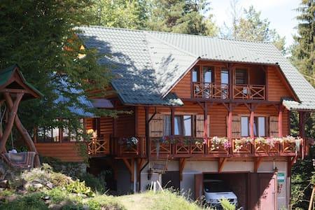 Panske Guest House - Kosiv - Chambres d'hôtes