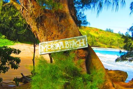 Dreamy Jungle Stream-Front Kayak Beach House! - 阿納霍拉(Anahola) - 獨棟