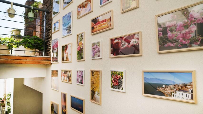 公共区域的照片墙。— 麦子摄。