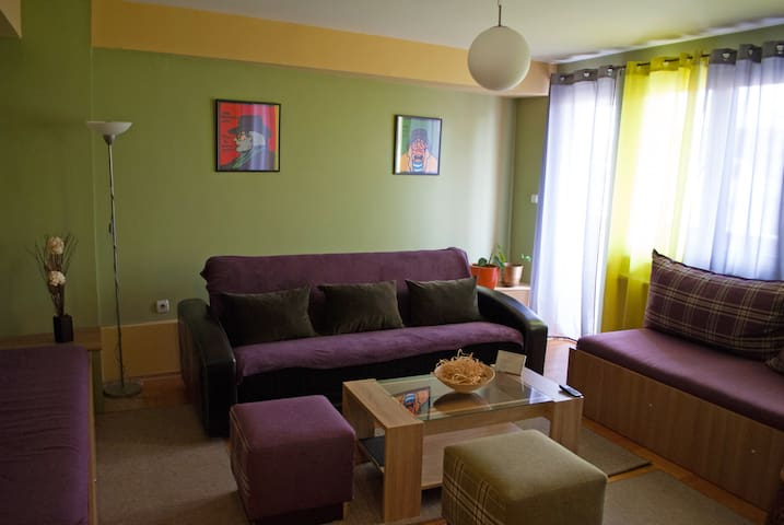 Cozy and spacious in downtown Nis - Niš - Appartement