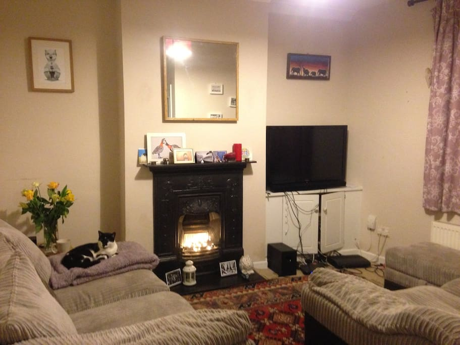 Living Room. Comes with 42inch TV, virgin media fibre optic wifi and sports package
