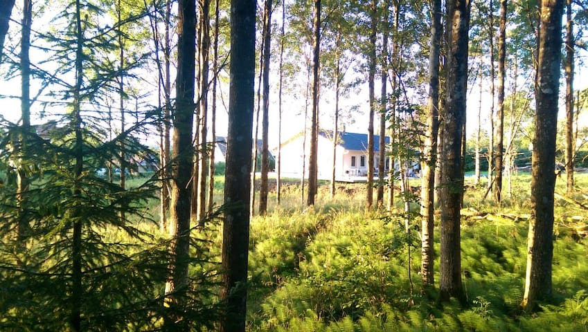 Newly built, close to nature and 25mins from Gbg