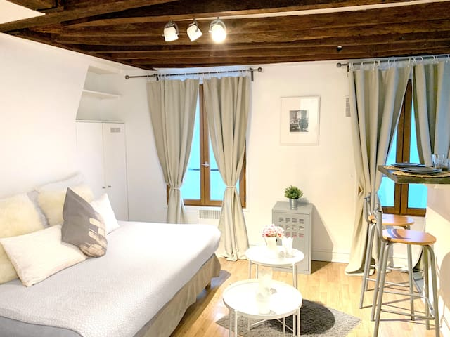 Amazing Flat center of Paris , le Marais