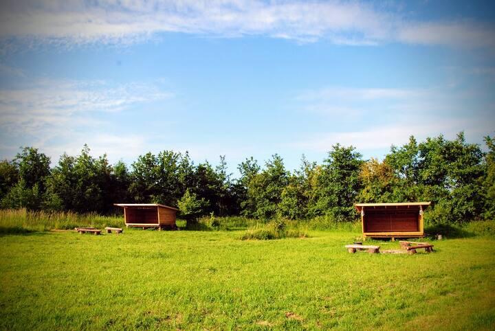 Shelter ved Camønoen og Stege - krokodilleshelter
